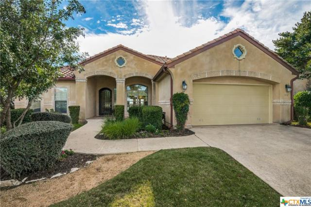 3502 Mentana, San Antonio, TX 78258 (MLS #363853) :: Berkshire Hathaway HomeServices Don Johnson, REALTORS®