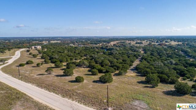Lot 19 Rain Lily Court, Burnet, TX 78611 (MLS #363899) :: Vista Real Estate