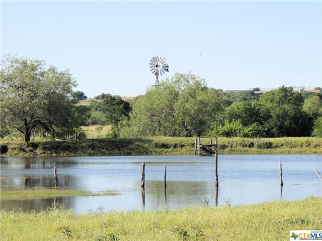 Tract 2 County Rd 532G Road, Moulton, TX 77975 (MLS #363969) :: The i35 Group