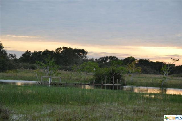 000 Highway 185, Seadrift, TX 77983 (MLS #364087) :: Magnolia Realty