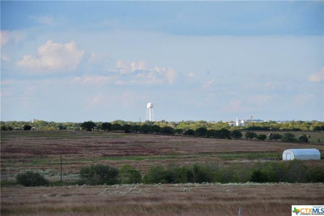 Tract 1 Fm 532, Moulton, TX 77975 (#364181) :: Realty Executives - Town & Country