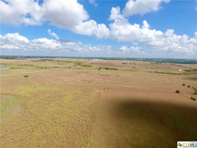Tract 4 Cr 291, Moulton, TX 77975 (MLS #364184) :: Erin Caraway Group