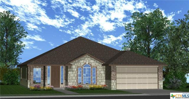 1203 Iron Glen, Temple, TX 76502 (MLS #364222) :: Vista Real Estate