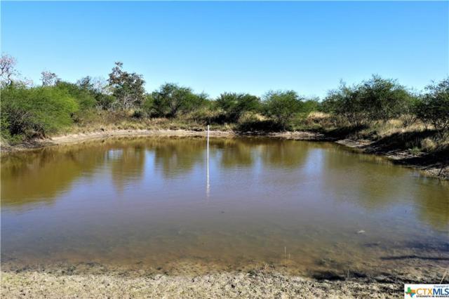 796 Shelly Road, Goliad, TX 77963 (MLS #364239) :: RE/MAX Land & Homes