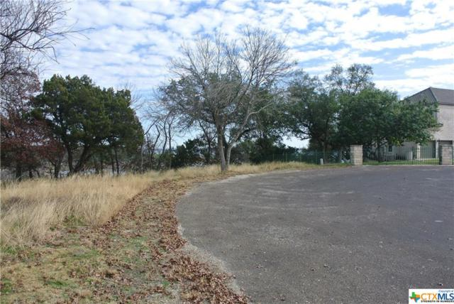 4819 Elf Trail, Belton, TX 76513 (MLS #364797) :: RE/MAX Family