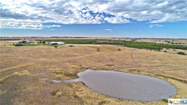 2661 County Road 290, Shiner, TX 77984 (MLS #365069) :: RE/MAX Land & Homes