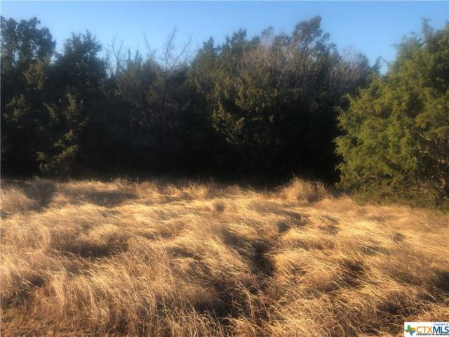 784 Cambridge, New Braunfels, TX 78132 (MLS #365149) :: Vista Real Estate