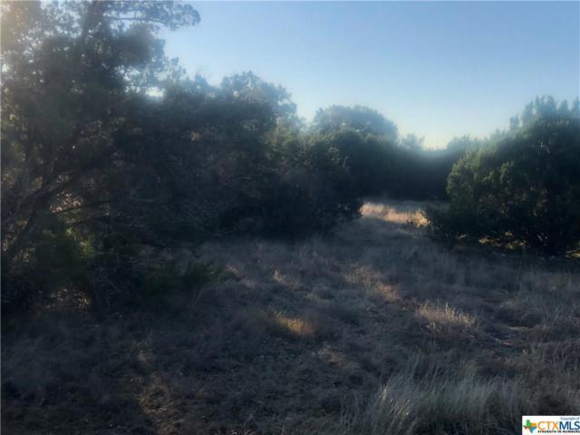 2674 Black Bear, New Braunfels, TX 78132 (MLS #365150) :: Vista Real Estate