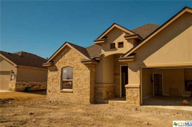 333 Western Sky, Jarrell, TX 76537 (MLS #365200) :: Vista Real Estate