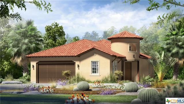 245 Sowing Oak Drive, San Marcos, TX 78666 (MLS #365252) :: Vista Real Estate