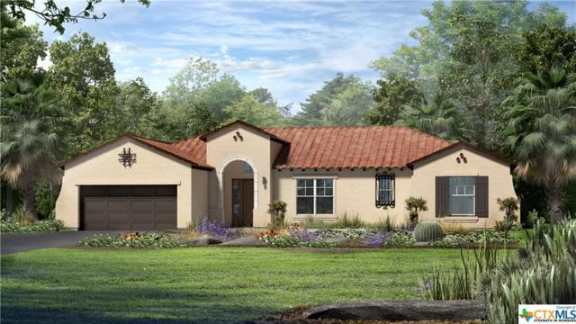 116 Dreaming Plum Lane, San Marcos, TX 78666 (MLS #365256) :: Vista Real Estate
