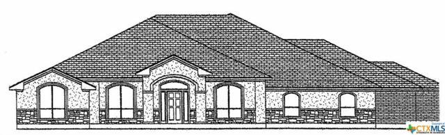 914 Cr 4772, Kempner, TX 76539 (MLS #365263) :: Vista Real Estate