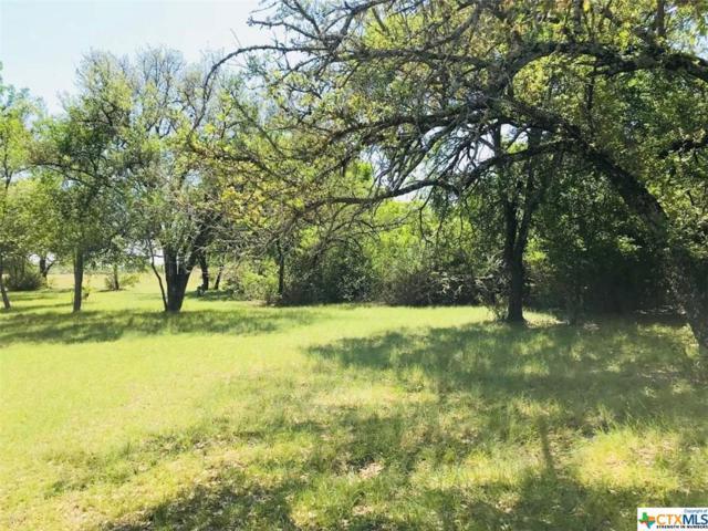 00 E Trimmier Road, Killeen, TX 76542 (MLS #365268) :: Vista Real Estate