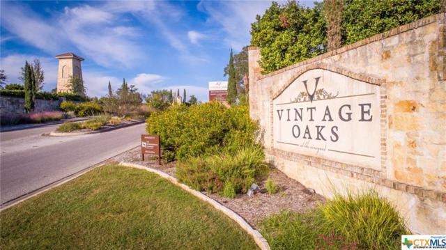 1643 Bussola, New Braunfels, TX 78132 (MLS #365270) :: Vista Real Estate