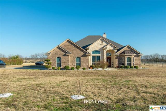 304 Hatter Drive, Moody, TX 76557 (MLS #365281) :: The i35 Group
