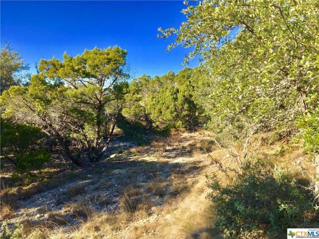 1264 Linda, Canyon Lake, TX 78133 (MLS #365312) :: Magnolia Realty