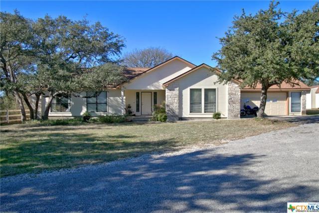 412 Summer Mountain, San Marcos, TX 78666 (MLS #365324) :: Magnolia Realty