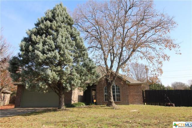 3112 Red Oak Drive, Belton, TX 76513 (MLS #365325) :: Magnolia Realty