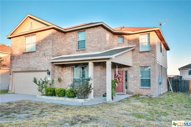 719 Evergreen Farm, Temple, TX 76502 (MLS #365335) :: The i35 Group
