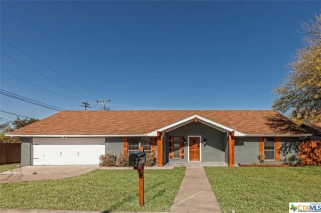 103 Moody Circle, Harker Heights, TX 76548 (MLS #365344) :: The i35 Group
