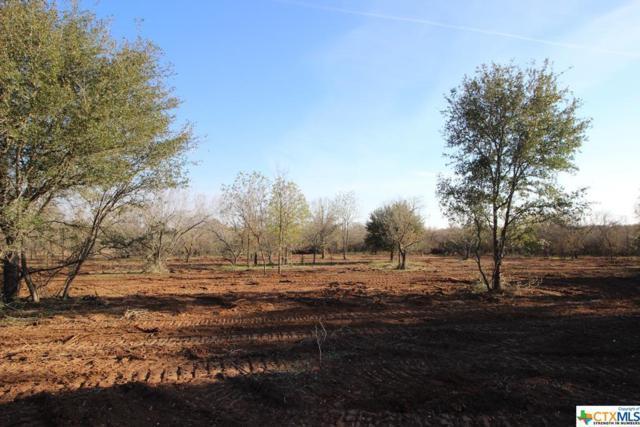 221 Burdette Wells, Lockhart, TX 78644 (MLS #365346) :: Magnolia Realty
