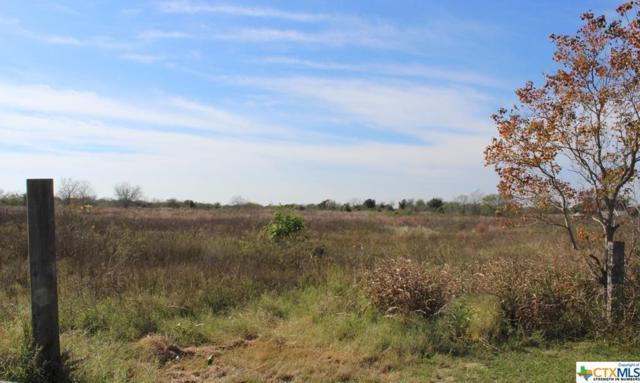 0 Pecan, Port Lavaca, TX 77979 (MLS #365416) :: Kopecky Group at RE/MAX Land & Homes