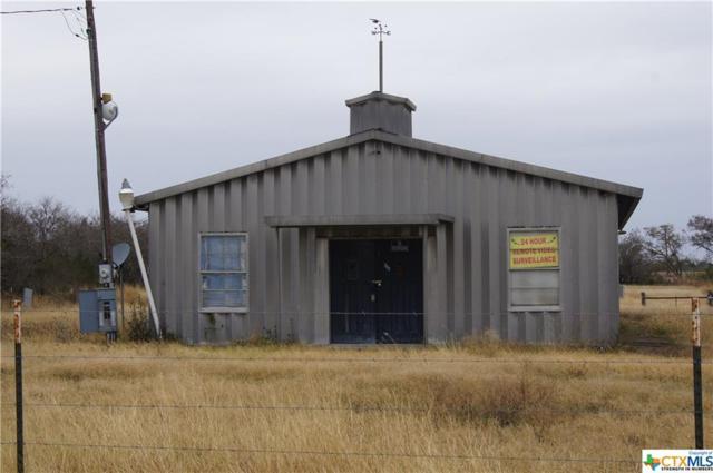 793 Charco, Goliad, TX 77963 (MLS #365499) :: RE/MAX Land & Homes