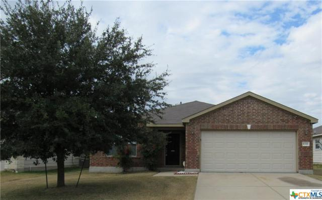 6311 Griffith Loop, Killeen, TX 76549 (MLS #365521) :: The i35 Group