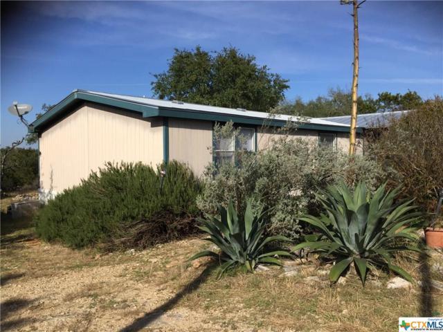 211 Fox, San Marcos, TX 78666 (MLS #365623) :: Erin Caraway Group
