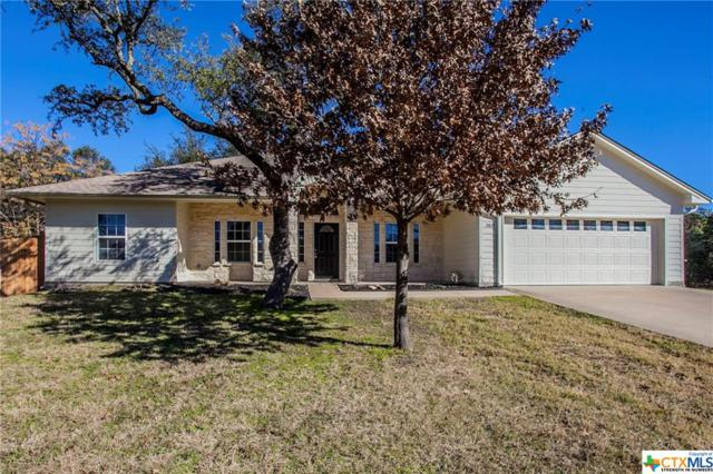 2838 Vista Trail, Belton, TX 76513 (MLS #365655) :: The i35 Group