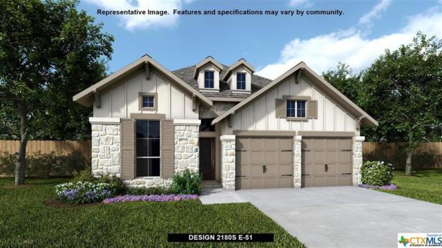 329 Lacey Oak Loop, San Marcos, TX 78666 (MLS #365659) :: Erin Caraway Group