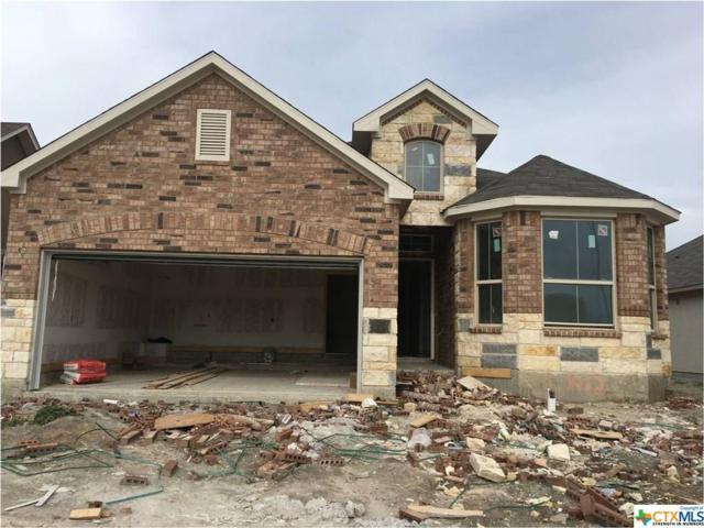 1412 Kamryn Way, New Braunfels, TX 78130 (MLS #365666) :: Erin Caraway Group
