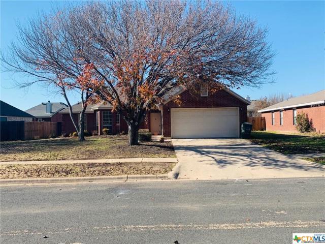 5007 Chad Drive, Killeen, TX 76542 (MLS #365724) :: The i35 Group
