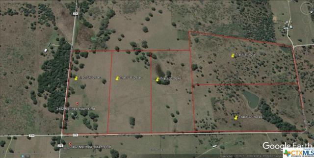 2402 Matthew Adams Tract E, Cuero, TX 77954 (MLS #365782) :: RE/MAX Land & Homes