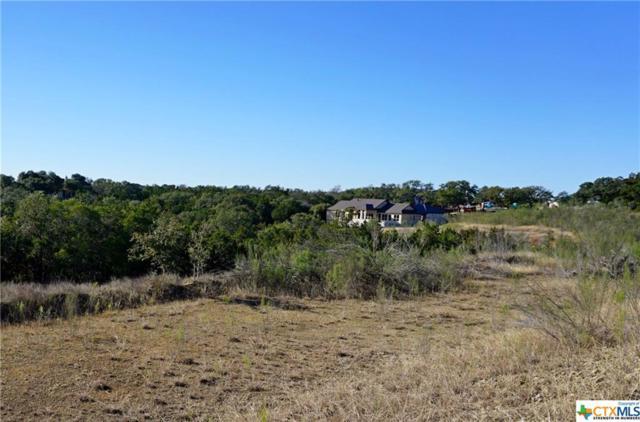 2120 Passare, New Braunfels, TX 78132 (MLS #365879) :: Vista Real Estate