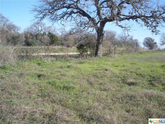 1948 Mule Creek Rd Road, Harwood, TX 78632 (MLS #366431) :: Vista Real Estate