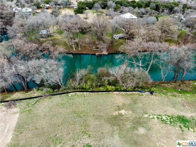 1350 River Place Drive, New Braunfels, TX 78130 (MLS #366693) :: Magnolia Realty