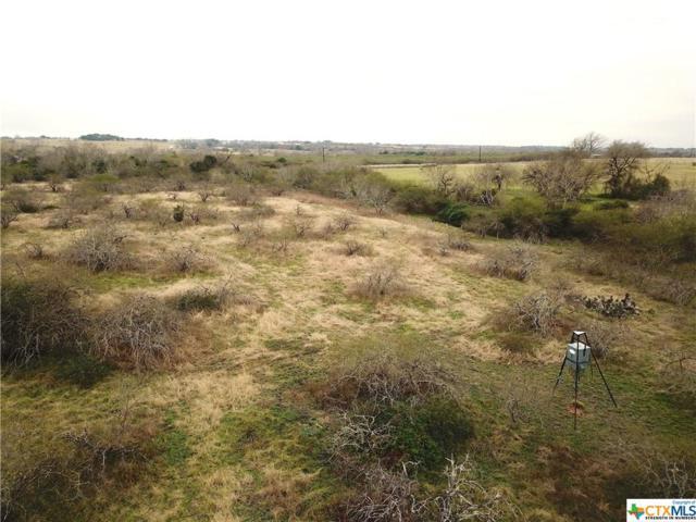 2060 County Road 302, Shiner, TX 77984 (MLS #366766) :: RE/MAX Land & Homes