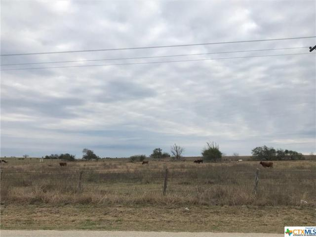 000 Cabeza Road, Nordheim, TX 78141 (MLS #366875) :: RE/MAX Land & Homes