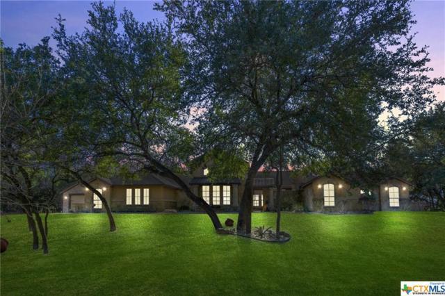 4411 Lago Vista Drive, Belton, TX 76513 (MLS #367024) :: Magnolia Realty