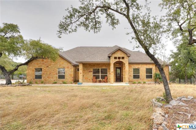 716 Shady Hollow, New Braunfels, TX 78132 (MLS #367028) :: Berkshire Hathaway HomeServices Don Johnson, REALTORS®