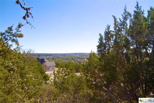 1118 Presidio, Canyon Lake, TX 78133 (MLS #367036) :: Berkshire Hathaway HomeServices Don Johnson, REALTORS®
