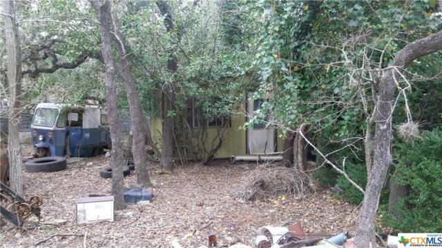223 Oakridge, Canyon Lake, TX 78133 (MLS #367070) :: Berkshire Hathaway HomeServices Don Johnson, REALTORS®
