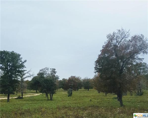 1077 Flash Circle, Luling, TX 78648 (MLS #367174) :: Magnolia Realty