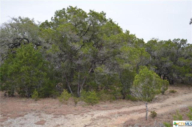 TBD Agave Ct, Wimberley, TX 78676 (MLS #367310) :: Magnolia Realty