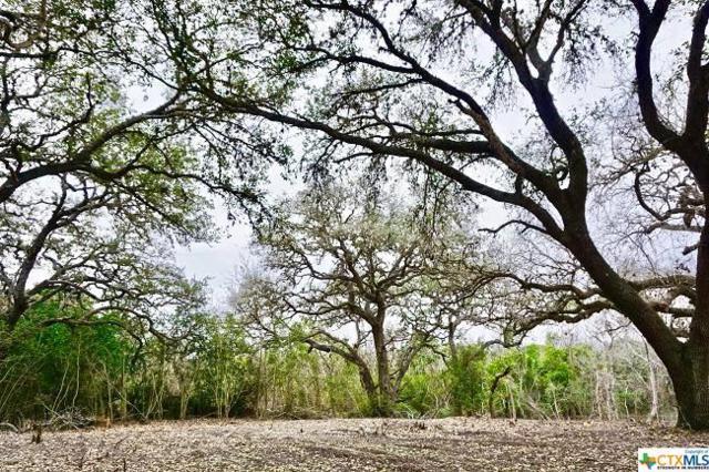 000 E. Oak, Goliad, TX 77963 (MLS #367336) :: RE/MAX Land & Homes