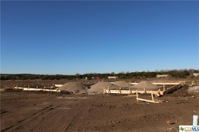106 Button Bush Court, Nolanville, TX 76559 (MLS #367339) :: RE/MAX Land & Homes