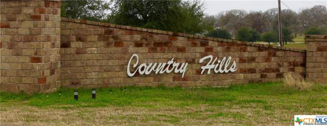 1169 Country View, La Vernia, TX 78121 (MLS #367357) :: Erin Caraway Group