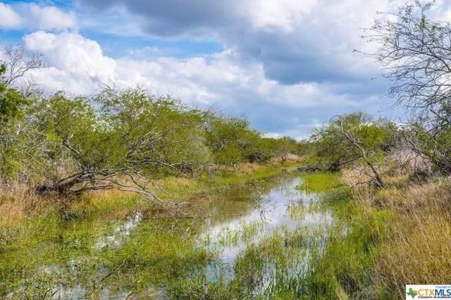 588 Highway 183, Refugio, TX 78377 (MLS #367413) :: Kopecky Group at RE/MAX Land & Homes