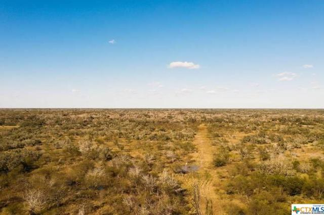 000 Hwy 183, OTHER, TX 78377 (MLS #367419) :: The Graham Team